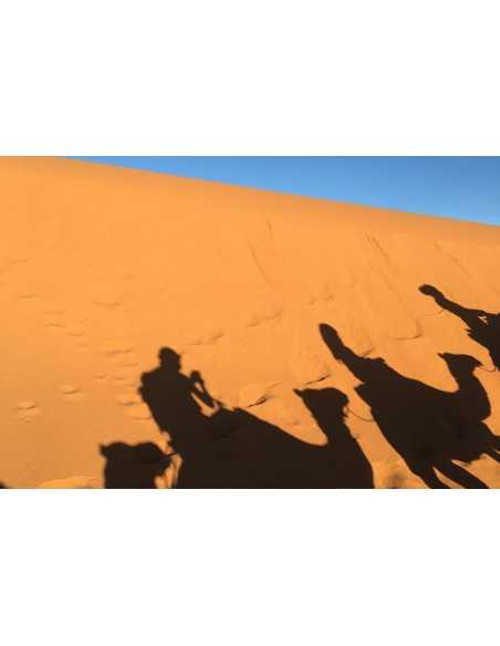 1 Día Excursión por la Kasbah de Ait Ben Haddou desde Ouarzazate